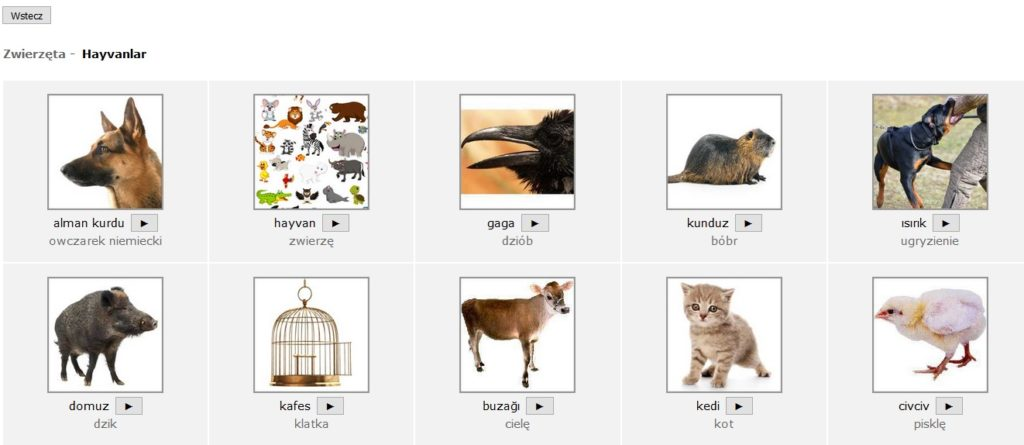 Zrzut ekranu - obrazkowy słownik polsko-turecki Goethe-Verlag online